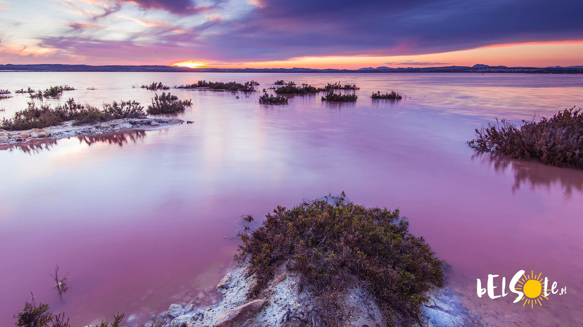 Laguna Rosa Salada w Torrevieja, w Hiszpanii