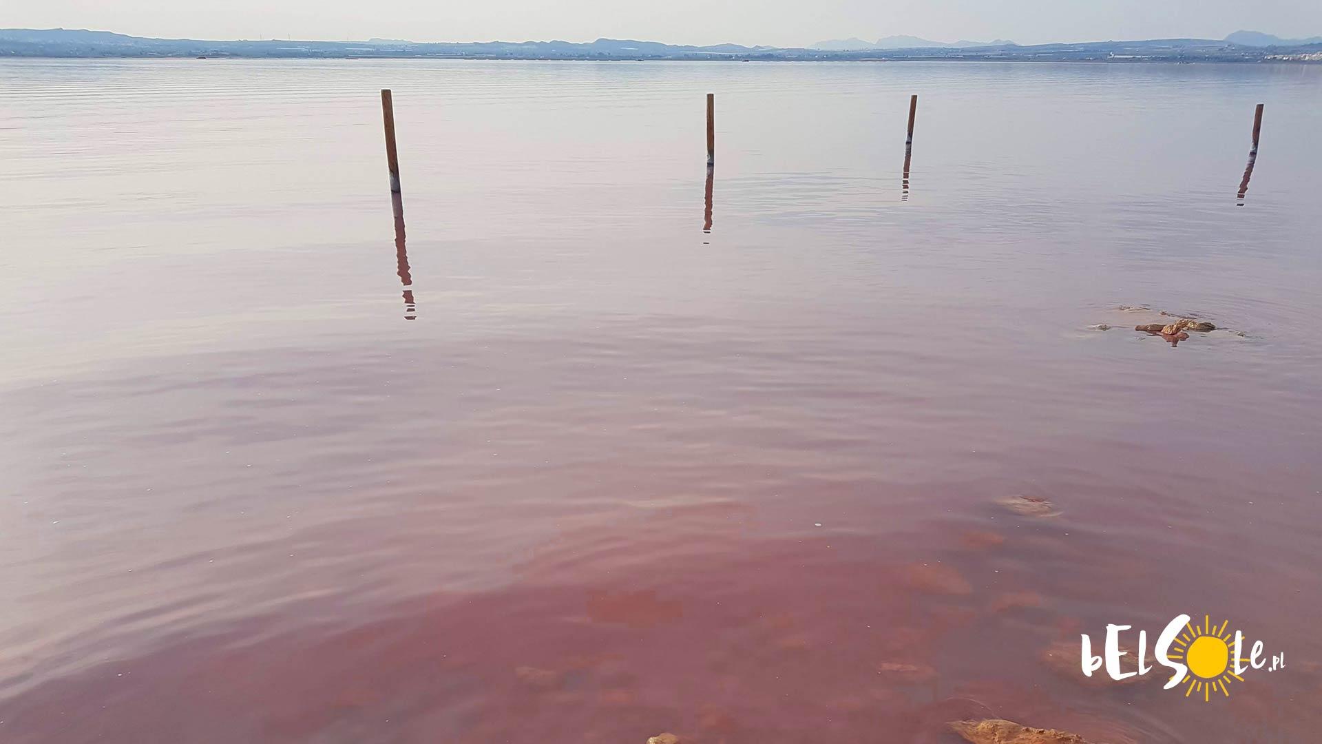rozowe jezioro laguna rosa hiszpania torrevieja