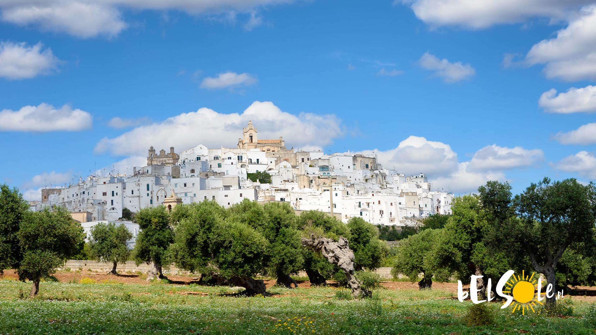 co kupić w Apulii i Bari