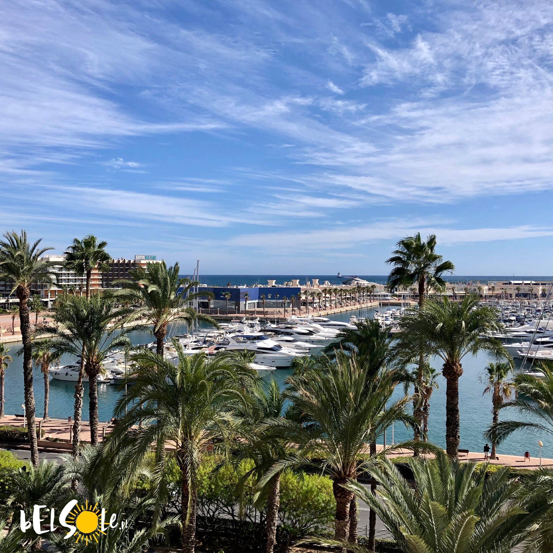 marina w Alicante